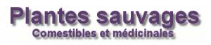logo_Couplan
